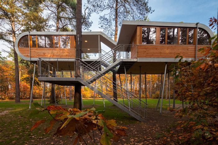 tree house (1)